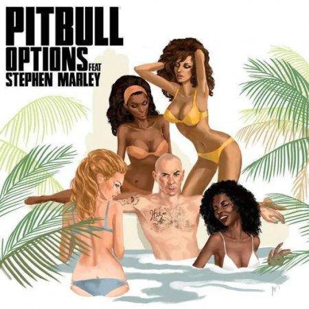 Pitbull feat. Stephen Marley - Options (Chuckie Remix)