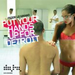 Fedde Le Grand - Put Your Hands Up For Detroit(Fraxwell Dj Bootleg)