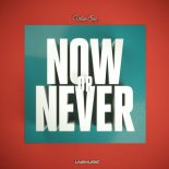 Urban She - Now or Never (FluxStyle Remix Edit)