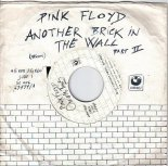 Pink Floyd - Another Brick In The Wall (Savin & Alex Pushkarev Remix)