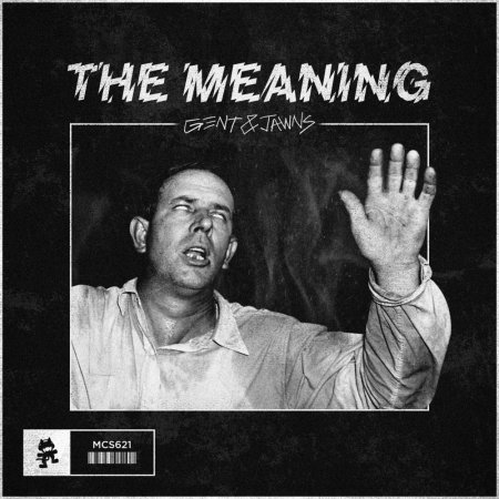 Gent & Jawns - The Meaning (Original Mix)
