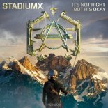 Stadiumx - It's Not Right But It's Okay (Original Mix)