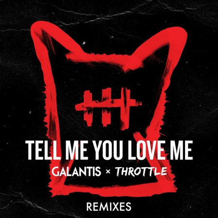 Galantis & Throttle - Tell Me You Love Me (Toby Green Remix)