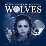Selena Gomez, Marshmello - Wolves (Tom Miles Remix)