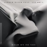 Andrew Bayer - Hold On To You (feat. Ane Brun) (In My Next Life Extended Mix)