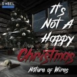 Nature Of Wires - It\'s Not A Happy Christmas (Radio Edit)
