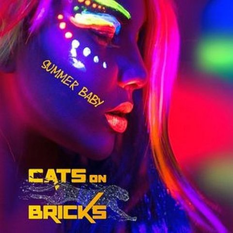 Cats On Bricks feat Zach Alwin - Summer Baby (Priest J & GOBA Big Room mix)